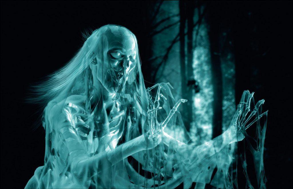 Какие бывают типы призраков?