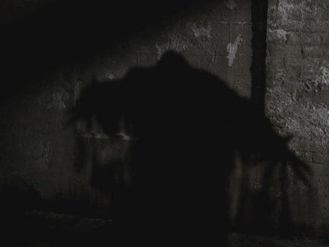 Таинственная тень